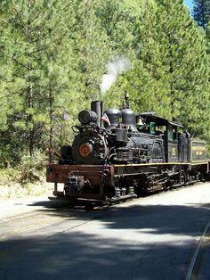 Shay locomotive.