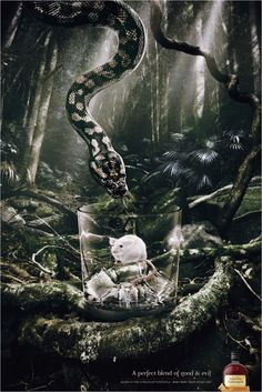 Diageo Australia Pampero: Snake / A perfect blend of good and evil.