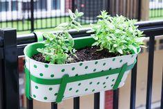 DIY Polka Dot Planters