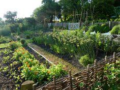 kitchen garden - Landscape Focused