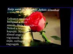 Jó éjt szép álmokat ! - YouTube Allah, Make It Yourself, Humor, Youtube, Humour, Funny Photos, Funny Humor, Comedy, Youtubers