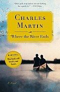 Powerful love story. books-worth-reading