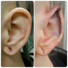 samppavoncyborg: Ear pointing