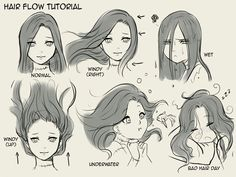 Les cheveux !!!!
