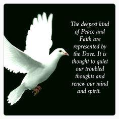 46 Super ideas for bird quotes bible peace Lonesome Dove, Dove Symbolism, Bird Quotes, Quiet Quotes, Golf Quotes, Peace Quotes, Nature Quotes, Diving Quotes, Turtle Dove