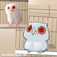 Owl reference.