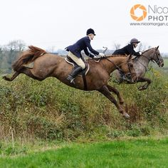 The Belvoir at Scalford Hall yesterday…http://www.nicomorgan.com/-/galleries/hunting-photography/belvoir-hunt/season-2013-14/belvoir-h...