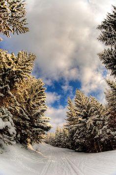 ✯ A Winter's Tale