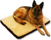No More Bedless Pets: For every Unreal Lambskin® pet bed sold, a shelter-certified pet bed will be donated to a worthy pet rescue shelter to help homeless animals.
