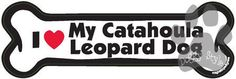 I Love My Catahoula Leopard Dog Bone Magnet http://doggystylegifts.com/products/i-love-my-catahoula-leopard-dog-bone-magnet
