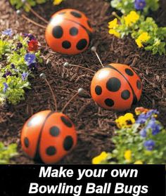 Garden Decor - DIY Bowling Ball LadyBugs -