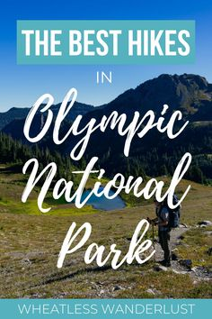 Want to go hiking in Olympic National Park? This guide to the best hikes has options, whether you're a beginner hiker looking for an easy stroll through the rainforest or along the beach, or you're a veteran looking for the most spectacular alpine climbs in the park. Rialto Beach, Hurricane Ridge, Olympic Mountains, Travel Guides, Travel Tips, Go Hiking, Best Hikes, Pacific Northwest, Travel Usa