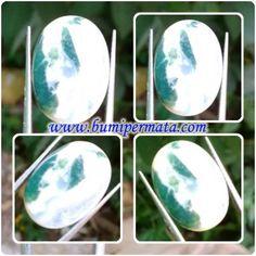 CM217 Batu Akik Natural Dendrite - Fungsi Fosil Rumput