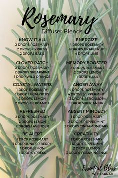 Rosemary Diffuser Blends | dōTERRA Essential Oils | Concentration | Flavouring