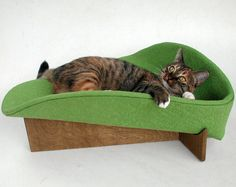 Modern cat bed in avocado cotton damask
