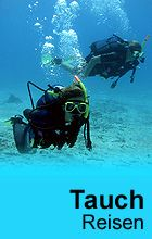 Tauchen - Tauchreisen in die Karibik nach Aruba, Curacao, Bonair