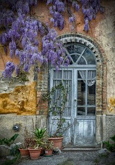 Vecchia porta, by rospex  The color palette is breathtaking. The wisteria is just stunning!