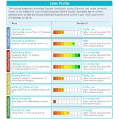 Saville Consulting Wave Expert Report Facet Ranges  Saville