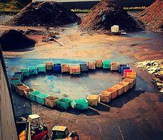 Boks heart  by Jarek Kot on tookapic
