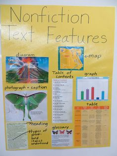 iTeach 1:1: Nonfiction Text Features (Freebie)