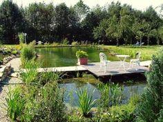 NaturaGart-Schwimmteich