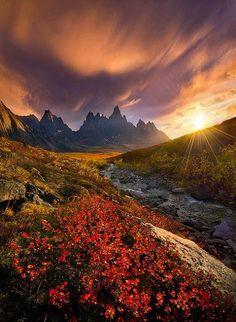 Beautiful Pictures - #FarNorth, #Yukon, #Canada