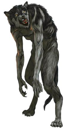 Werewolves were creatures capable of transforming from a presumed human-like appearance to that similar to a wolf. Werewolves, along with Ogres, Boggles and Hags, were considered among Narnia's darkest and most evil of races. Werewolf Name, Werewolf Tattoo, Dark Fantasy, Fantasy Art, Character Art, Character Design, Arte Horror, Creature Concept, Monster Art