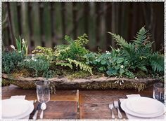 Real Wedding, Outstanding Long Hypertufta Moss Cement Organic Centerpiece DIY Ferns Maidenhair Lily Of The Valley Thyme Farm Table: a delica...