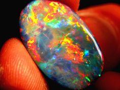 More of the Lightning Ridge Black Opal