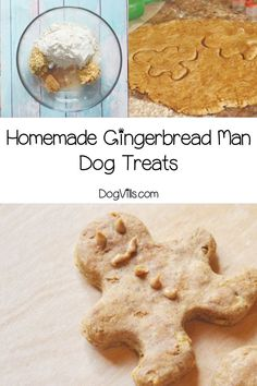 Dog Food Advertising Get ready to spoil your pooch with our tasty homemade gingerbread man dog treats recipe!Dog Food Advertising Get ready to spoil your pooch with our tasty homemade gingerbread man dog treats recipe! Dog Treat Recipes, Dog Food Recipes, Cooker Dog, Dog Christmas Gifts, Food Advertising, Man And Dog, Best Dog Food, Homemade Dog Treats, Dog Eating