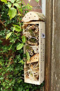 kreamade: insectenhotel en col