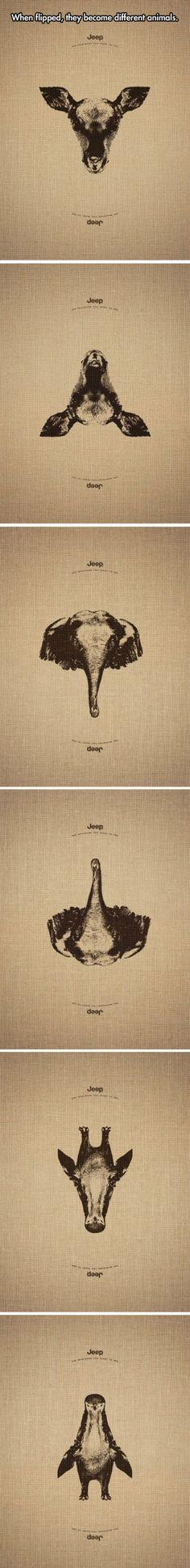 Creative Campaign