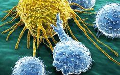 """7 mijloace prin care ne putem menține celulele """"natural killer"""" sănătoase"""