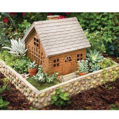 Mini garden!