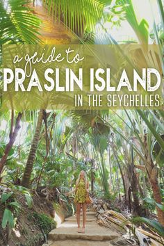 A Guide to Praslin Island in the Seychelles