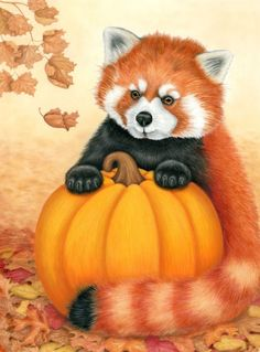 NEW autumn holiday greeting card featuring the endangered red panda of Asia posing with a pumpkin in the fall leaves Holiday Greeting Cards, Red Panda, A Pumpkin, Designs To Draw, Autumn Leaves, Tigger, Colored Pencils, Things That Bounce, Whimsical