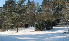 Log cabins in the snow