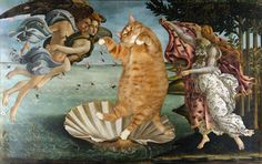 cat-art-the birth of venus sandro botticelli Cat lovers and art enthusiasts, this one is for you: Here are the cat art masterpieces that classical art was missing. Classic Paintings, Great Paintings, Old Paintings, Romantic Paintings, Classic Artwork, Johannes Vermeer, Monet, The Birth Of Venus, Famous Artwork