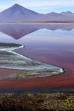 Red salt lake, Uyuni