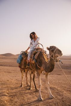 Camel rides before breakfast