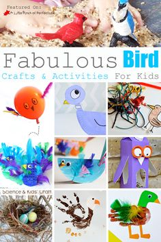 Fabulous Bird Crafts and Activities for Kids to Learn, Create, & Play