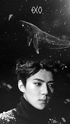 Read Sehun 2 from the story Kpop Wallpaper by Damdamdamdaaa (?) with 851 reads. twice, astro, wallpaper. Kyungsoo, Sehun Hot, Kaisoo, Exo Sing For You, L Wallpaper, Exo Group, Exo Official, Exo Lockscreen, Exo Do