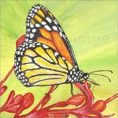 Emotion-Art - Schmetterling