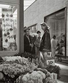 San Francisco Vintage Photography by Fred Lyon