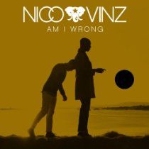 Am I Wrong Mp 3 Download