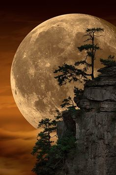 Can This Photo by Peter Lik Possibly Be Real?-Can this Photo by Peter Lik Possibly be Real? Peter Lik, whom many believe is the world& most … - Beautiful Nature Wallpaper, Beautiful Landscapes, Most Beautiful Paintings, Moon Photography, Landscape Photography, Peter Lik Photography, Amazing Photography, Nature Pictures, Beautiful Pictures
