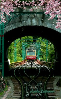 Kyoto Japón Beautiful Places In Japan, Wonderful Places, Beautiful World, Turning Japanese, World Photography, Train Tracks, Nara, Japan Travel, Japanese Art