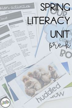 Literacy activities for preschoolers based around four popular read-alouds. This Literacy unit is based on a Spring theme. Third Grade Reading, Early Reading, Comprehension Strategies, Reading Comprehension, Authors Purpose, Common Core Reading, Literature Circles, Context Clues, Vocabulary Cards