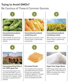 6 Common Sources of GMO's