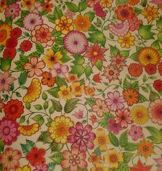 Fernanda Bnolles  Jardim Secreto   Secret Garden   Johanna Basford   Colouring Books   Livros de Colorir
